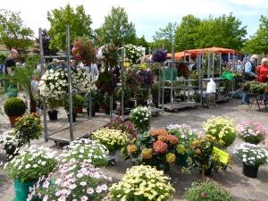 Flower festival in Kellinghusen