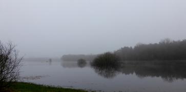 Fog and flooding