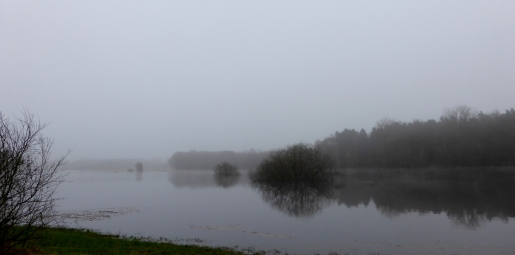 Fog and flooding